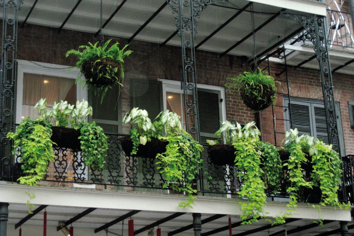 5 trucos sencillos para sacarle partido a tu balc n - Plantas de balcon ...