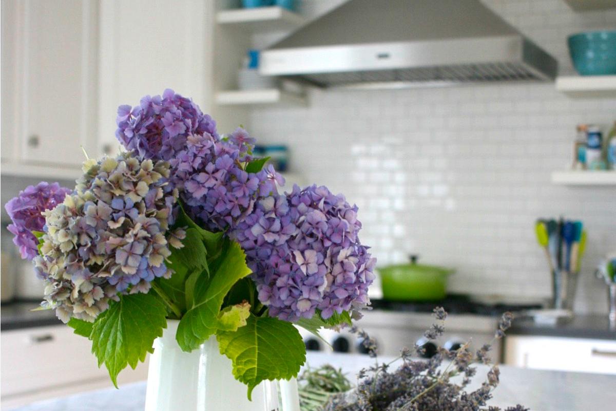 flores-cocina